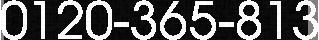 0120-365-813